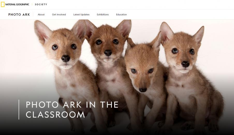 Photo Ark Education Website