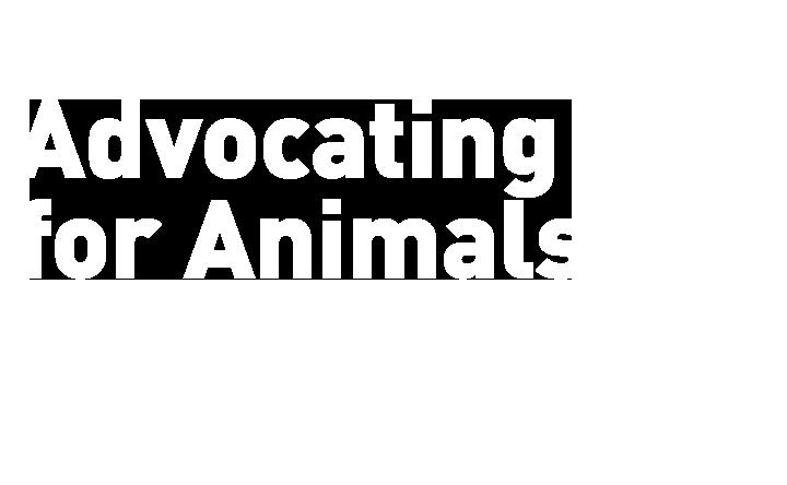 AdvocatingForAnimalsArcadeName_4