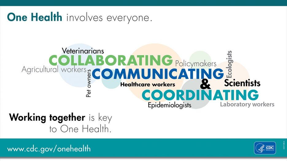 OneHealthWorkingTogether