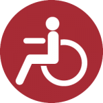 Motor Disability