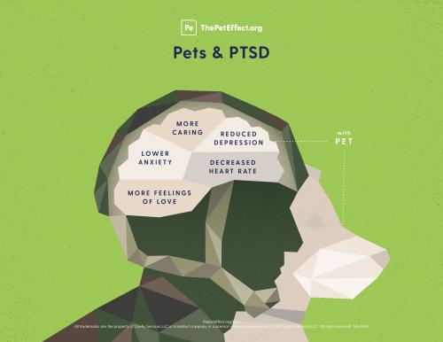 Pets & PTSD