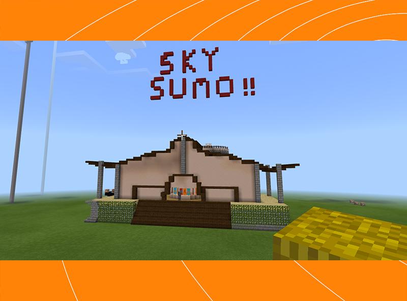 Sky Sumo